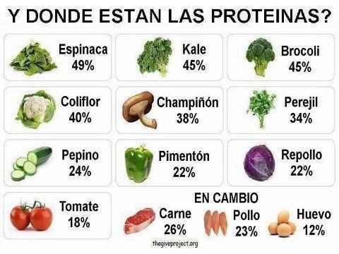 ¿De dónde sacamos las proteínas los vegetarianos?: Las Proteina, Nutrition, Diet, Dónde Están, Are The, Menu, Ond Estão, Dond Estan, Las Proteína