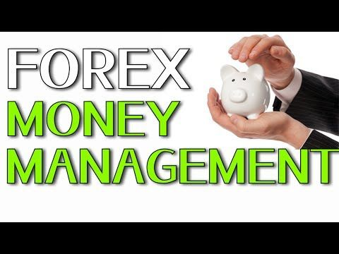 Forex money management examples