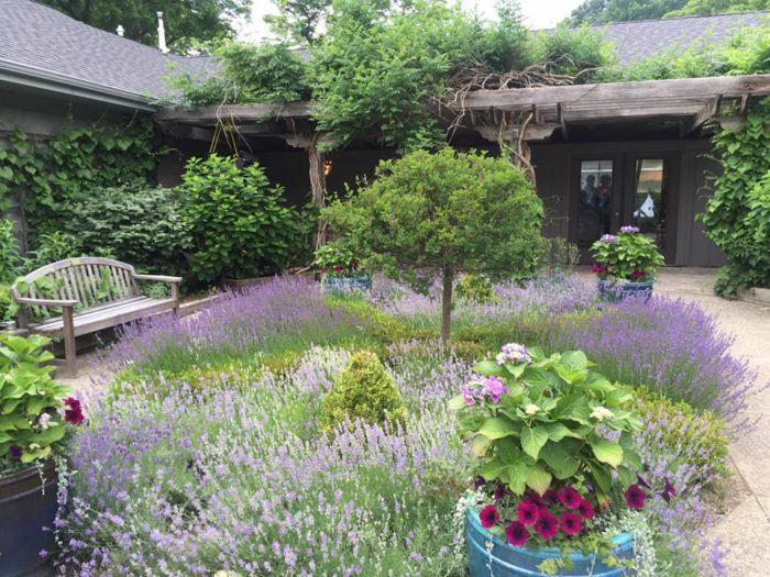 30 best Favorite Spaces at Fernwood images on Pinterest   Botanical ...