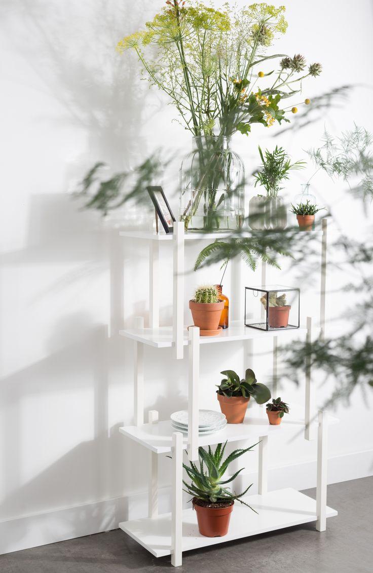 Build shelf