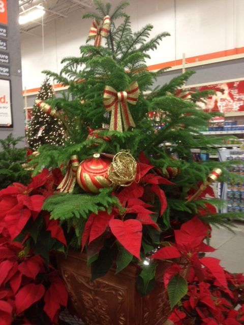 1000 Images About Home Depot Displays On Pinterest