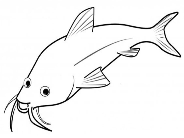 fish as pets coloring pages - photo#16