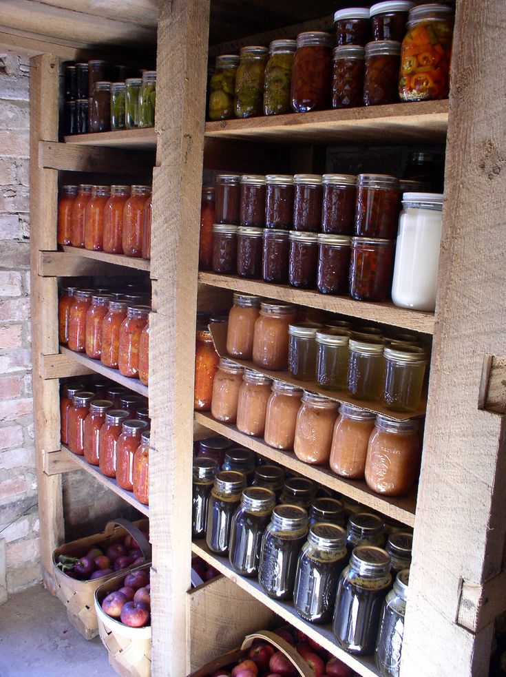 681 best images about root cellar on pinterest root for Basement storage ideas