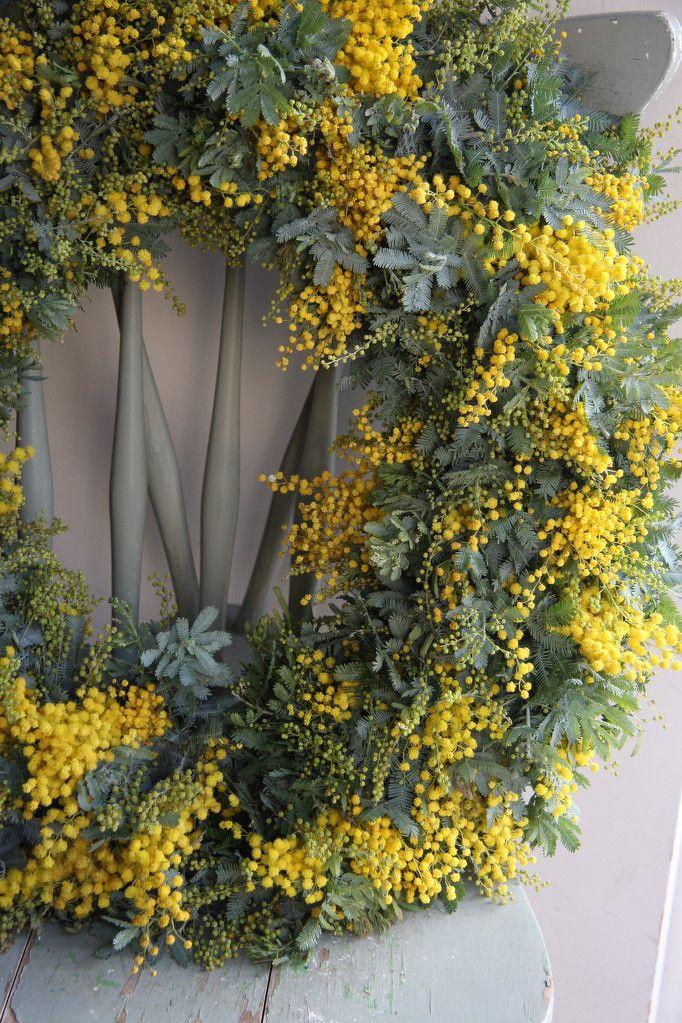 Mimosa wreath - fleurs trémolo