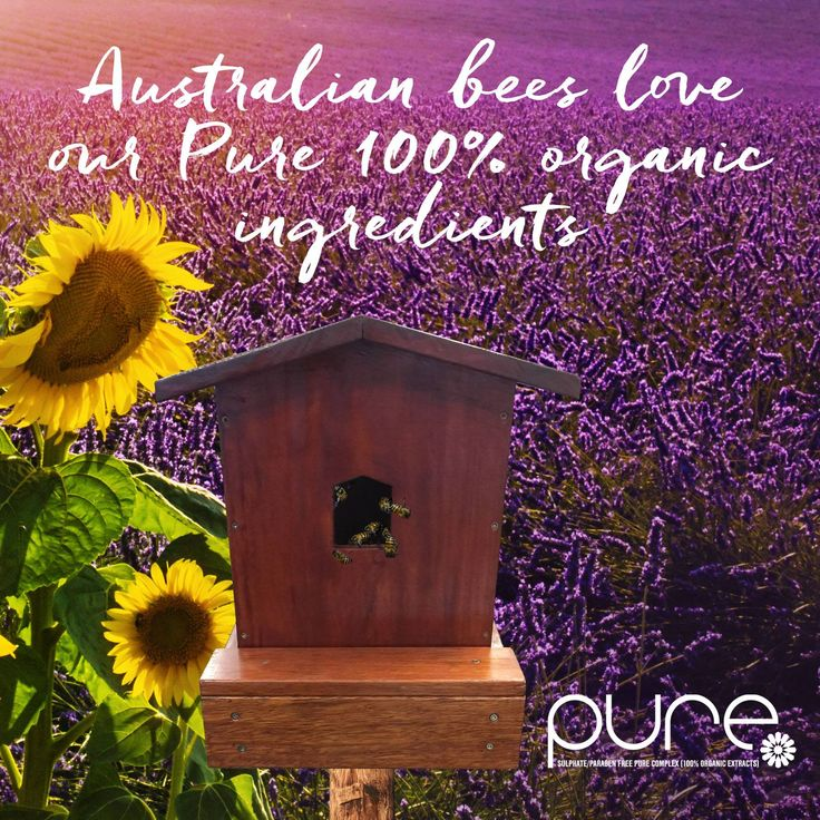 Bee pure - save the bees!