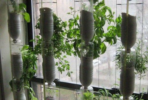 DIY hydroponic window system: Window Gardens, Plastic Bottle, Diy Plastic, Water Bottle, Crafts Ideas, Gifts Ideas, Hydroponics Gardens, Bottle Projects, Window Farms
