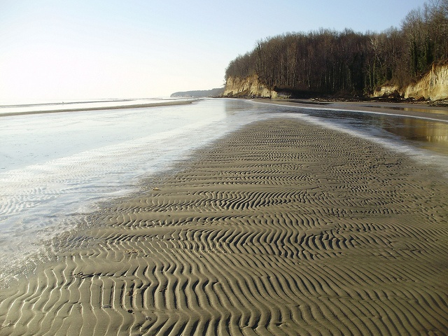 43 best Chesapeake Bay- Calvert County Maryland images on Pinterest - best of letter of good standing maryland