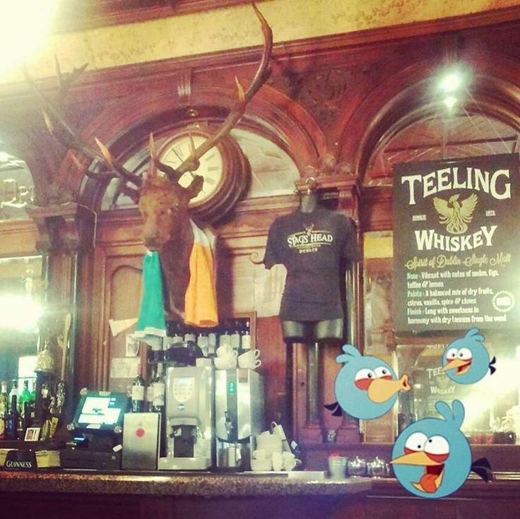 ...after-vote refreshments! #olut #öl #angrybirds #useyourvote #earlyvoting #stagshead #dublin #damelane #pub #stag #bar #ireland #beer #bier #teelingswhiskey #instadublin #aplacetodrink #boozer #visitdublin #instaireland #deer #publichouse #lovindublin #puboftheday #pintplease #publife #beerlover #stagsheaddublin