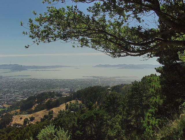 Grizzly Peak - San Francisco East Bay by Stefan Didak, via Flickr