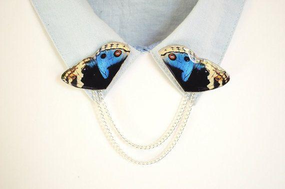 Blu gioielli farfalla, accessorio farfalla, farfalla blu, maglione clip, collare catena, clip camicia, colletto perni, gioielli funky