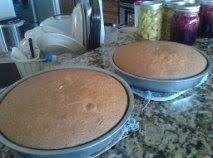 Albino Dragonfly Cake #white #moist #buttermilk #justapinchrecipes