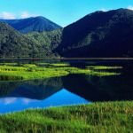New Zealand is a must-see for most world travelers. This hot spot destination is one of those rare places that seems almost untouched by many of the modern advances that plague and pollute the more densely populated areas of the world. If you want to...