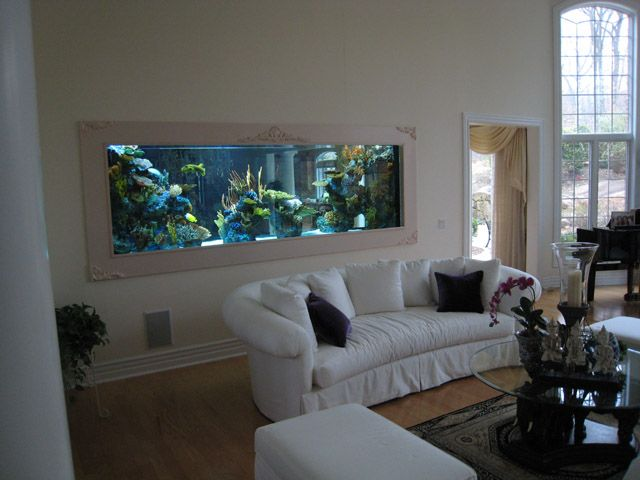 Best Wall Aquarium Ideas On Pinterest Home Aquarium Fish