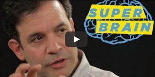 Slow-wave sleep Suspends Alzheimers Build-Up