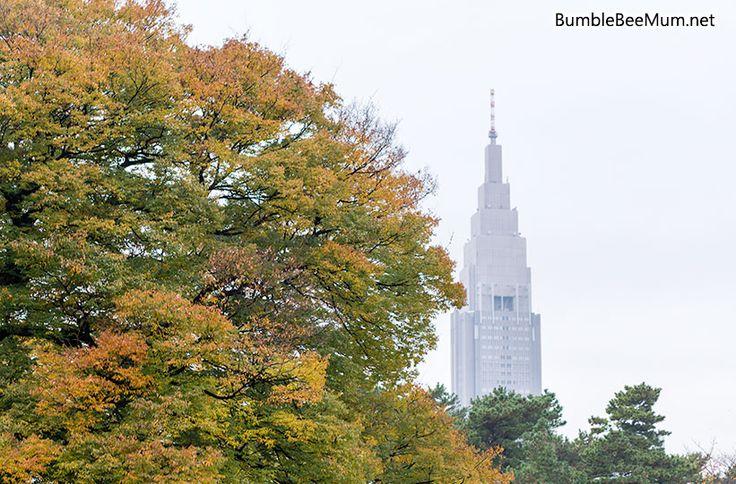 Shinjuku Gyoen (Tokyo) in Autumn