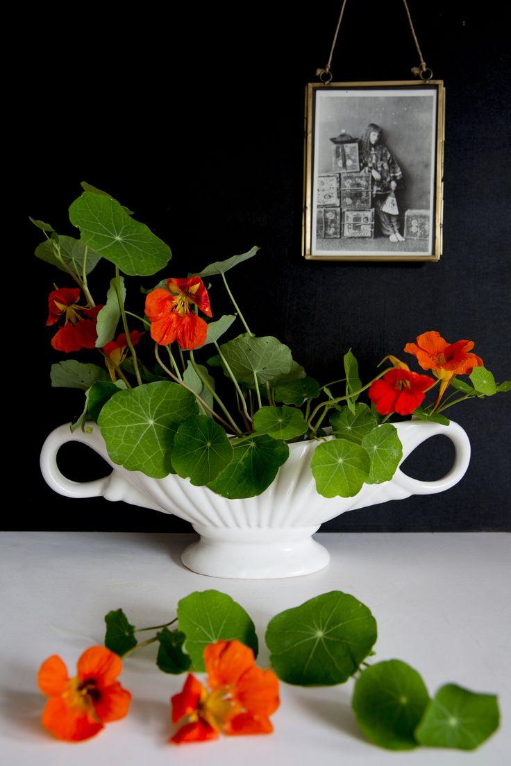 Die besten 25 constance spry ideen auf pinterest soulfoodstudio shop constance spry style vase constance spry style flowers nasturtium flowers reviewsmspy