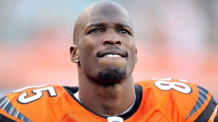 "Not really""sport"" news., but....CINCINNATI - NOVEMBER 21: Chad Ochocinco #85 of the Cincinnati Bengals watches the final minute of the Bengals 49-31 loss to the Buffalo Bills at Paul Brown Stadium on November 21, 2010 in Cincinnati, Ohio. (Photo by Andy Lyons/Getty Images) *** Local Caption *** Chad Ochocinco"