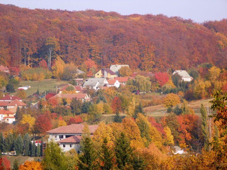 Colourful Autumn ,Bükkszentkereszt