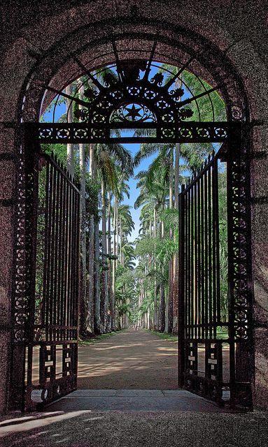 Botanical Garden, Rio de Janeiro, Brazil The Good Life - All about Luxury #TheGoodLife - AllAboutLuxury