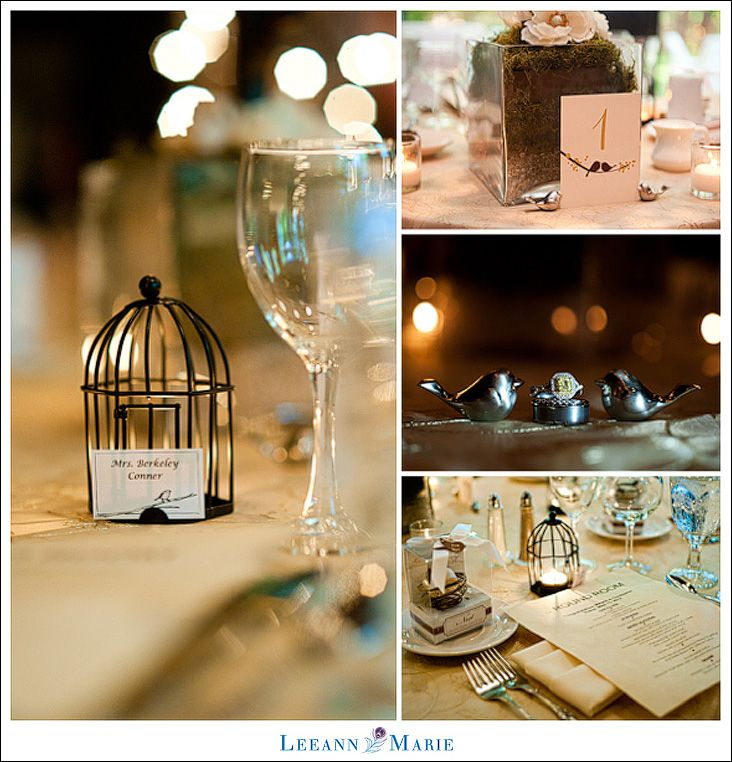 A love birds theme intimate wedding reception details photography 3096dec83bfc343e60187add956867aa intimate weddings intimate wedding receptiong junglespirit Choice Image