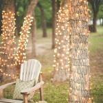 led arbres