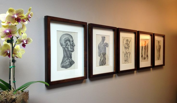 Vintage framed anatomy text    day spa    massage therapy room    esthetician room    aesthetician room    esthetics    skin care    body waxing    hair removal    body scrub    body treatment room