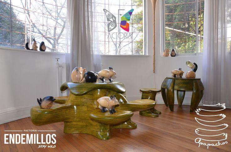 Showroom para Mundo Apapacho /  The World of Apapacho
