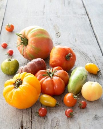 Heirloom Tomato Basics - Heirlooms are so-called because the seeds have been handed down over generations, and they are open-pollinated, meaning they produce seeds that resemble the parent plant, not always the case with commercial hybrids, which are bred for durability rather than taste.