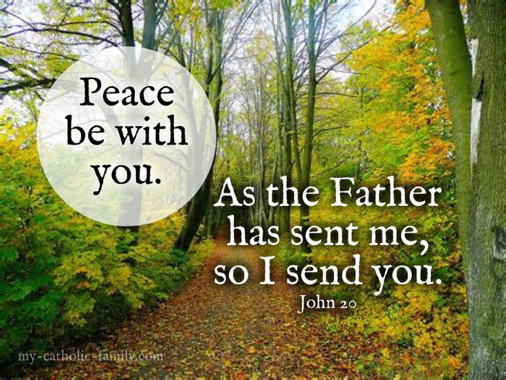 """Daily Mass readings: http://www.my-catholic-family.com/3943/daily-scriptures-father-sent-send/ Jesus said to them again, """"Peace be with you. As the Father has sent me, so I send you."""" And when he had said this, he breathed on them and said to them, """"Receive the Holy Spirit. Whose sins you forgive are forgiven them, and whose sins you retain are retained."""""""