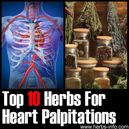 Herbs for weight loss Top 10 Herbs For Heart Palpitations ►► www.herbs-info.co...