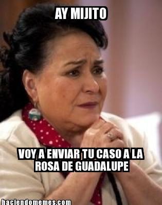 Ay mijito, voy a enviar tu caso a la Rosa de Guadalupe. #carmensalinas #memes #humor