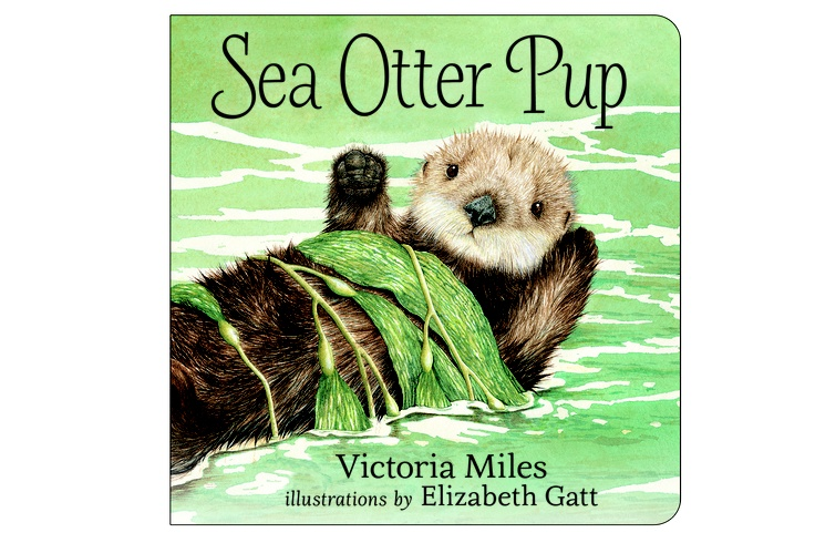 Sea Otter Pup by Victoria Miles and illustrated by Elizabeth Gatt
