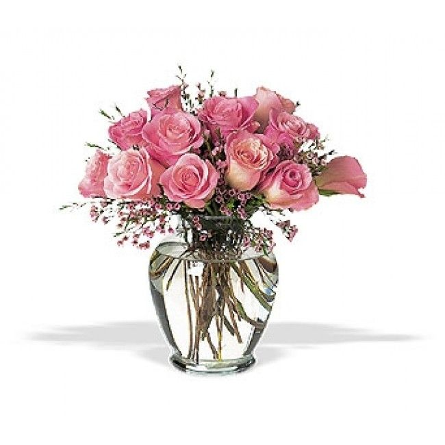 Davis Wilson Florist mixed bag of alternatives from red roses, purple roses, pink roses exquisite long stem roses, blended rose bundle and even those on a financial plan! Send a dozen beautiful pink roses to that special someone from davis wilson florist in las vegas.  Website:- http://davis-wilson-florist-las-vegas.blogspot.com/  GPL:- https://plus.google.com/u/0/113075697561683417830/about  Address:- 6516 Moon Roses Ct, Las Vegas, NV, 89108, USA  Phone No:- (702) 359-0285