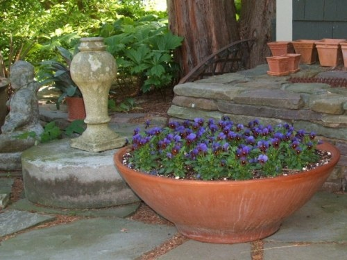 Love this wide urn with the mass of pansies.Inspiration Gardens, Gardens Art, Gardens Design, Ensure Your Gardens