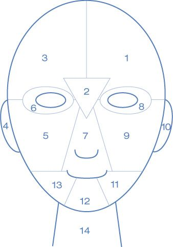 Did you know your face is comprised of different zones? Depending on where you have breakouts, congestion, or fine lines can be indicative of what's happening inside! Have your face mapped with me to learn more.