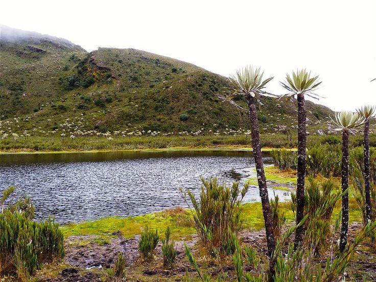 Serrania de Dios -  Cundinamarca