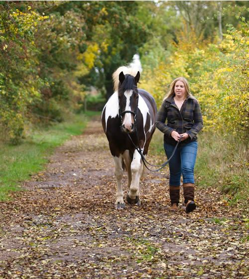 Sometimes youcan't ride. Sometimes youdon't want to. Here are31 fun and useful things to do with your horse – other than riding…