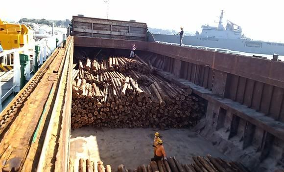 TOKYO -- Export values of Japanese timber products in 2017 likely hit highs not seen in four decades, with industrial demand in economically growing C