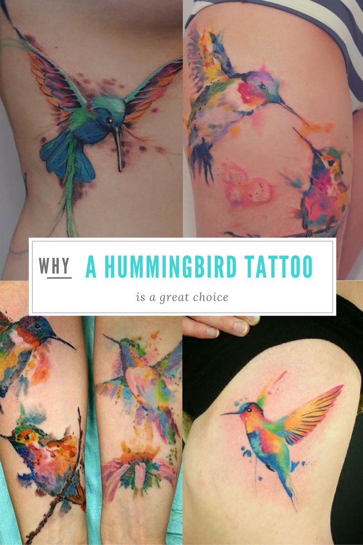 If you're interested in a hummingbird tattoo, look no further! Today's article contains tons of information about these flighty birds and over...
