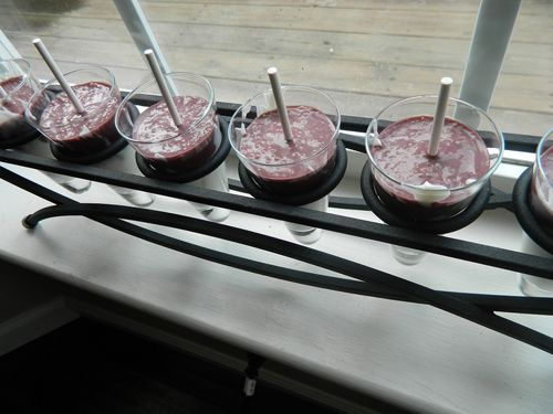 Acai Powerhouse Pops! Natural, healthy and preservative-free. Only 3 ingredients!! Vanilla Greek yogurt, acai puree (found in frozen section of grocery store,) and honey-based simple syrup. Blend, pour, freeze - and enjoy!!