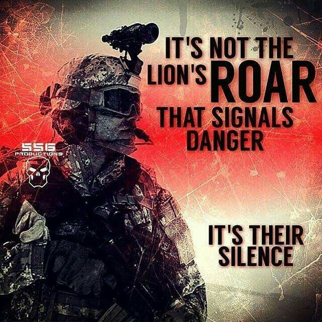 Seek not the roar... but fear the silence of your enemy ~@guntotingkafir