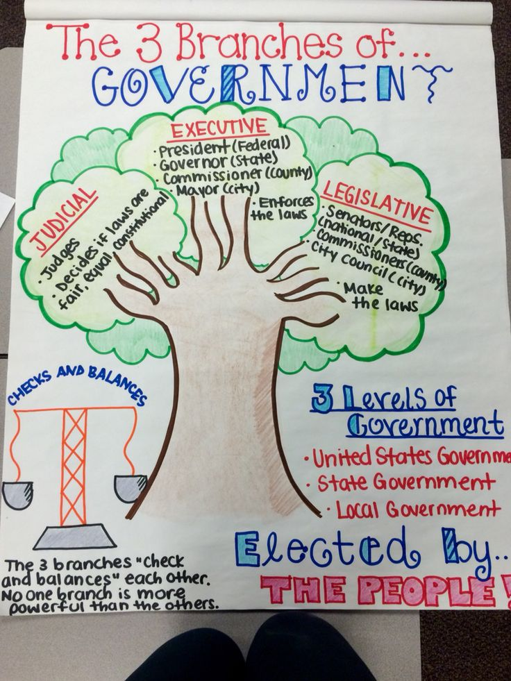 The Three Branches of Government- 3rd Grade                              …