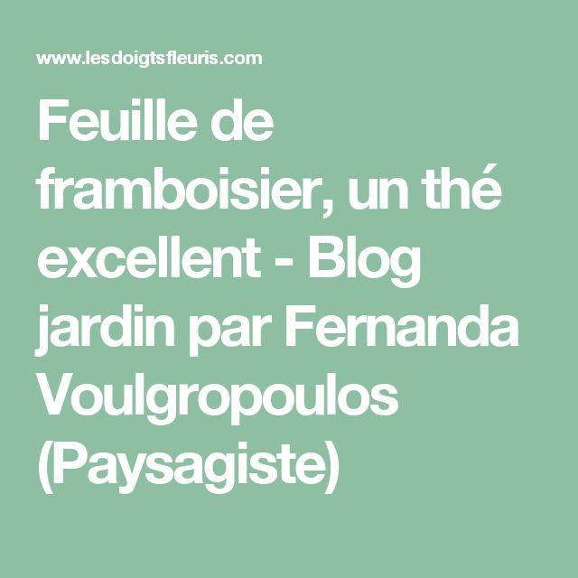 Feuille de framboisier, un thé excellent - Blog jardin par Fernanda Voulgropoulos (Paysagiste)