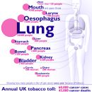Smoking - Cancers Caused By Smoking Infographic