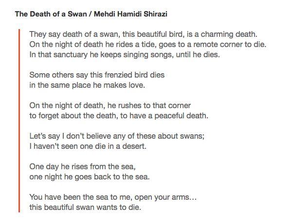 Persian Poetry Swan love poetry Mehdi Hamidi Shirazi https://mjanecolette.com/2016/09/16/the-death-of-a-swan-mehdi-hamidi-shirazi/