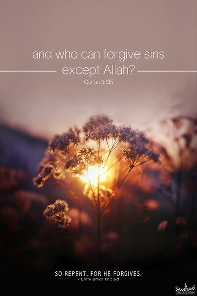 Who can forgives sins but Allah