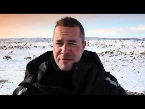 Reindeers and the Sami people - Simon Smith in Finnmark