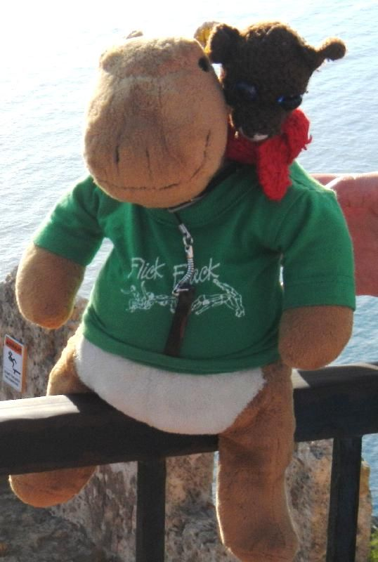 Lost on 05/09/2014 @ Alanya / Turkey . Hey,I lost my 2 best friend's (a bear and a hippo) on friday 2014/09/05 in alanya (turkey)! May you can help me to get them back! I really love and miss them! These two guys love to travel! We ha... Visit: https://whiteboomerang.com/lostteddy/msg/pbexmp (Posted by Elisch on 13/09/2014)