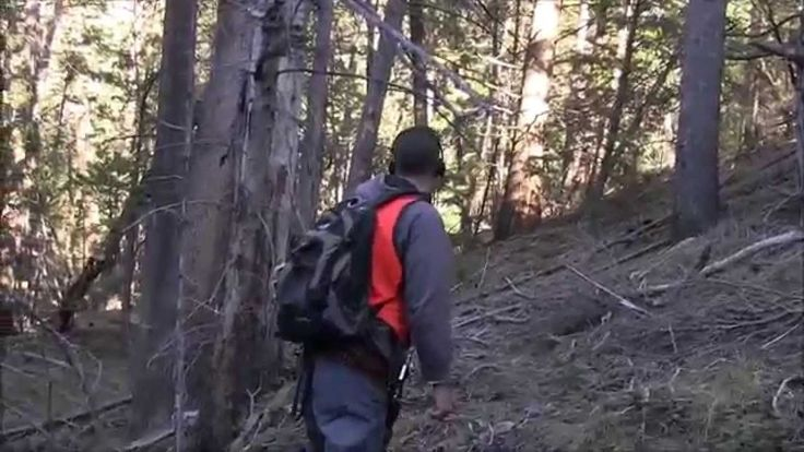 RMSO Most Bigfoot Evidence in One Expedition Bigfoot