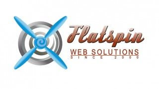 Flatspin-Web